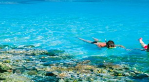Great Barrier Reef snorkellers