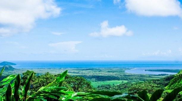 Alexandra Lookout Daintree Rainforest