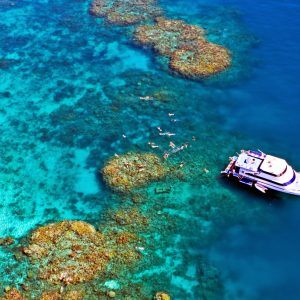 Cairns Reef tours and Dinner Cruise